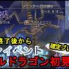 【DFFOO速報】スカルドラゴンが居るステージには様々な対策方法があるよ!!