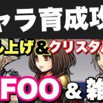 - 攻略動画 - 【DFFOO】キャラ育成攻略&効率レベル上げ&覚醒からのイベントに向けて!